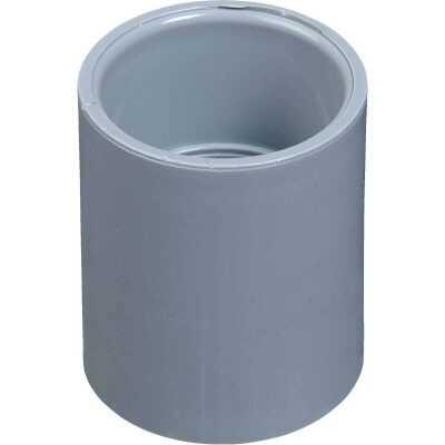Carlon PVC 1-1/4 In. Socket Conduit Coupling