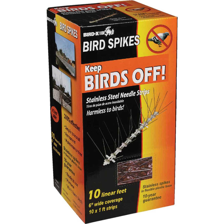 Bird X Stainless Steel 10 Ft. L. Bird Control Spikes Image 3
